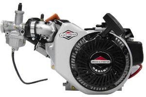 Engine Briggs World Formula #124335-8106